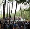 깊은산속옹달샘, 8090 낭만콘서트 '숲속 힐링음악회' 개최